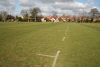 rugby pitch lines