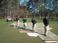 Topdressing the old fashioned way - Drop and brush (Large).jpg