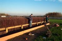 fenceconstruct06.jpg