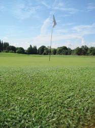 The 2mm Debate, Golf Green
