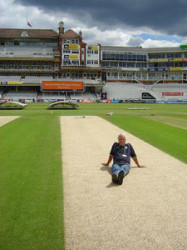 ODI-wicket-England-v-Austra.jpg