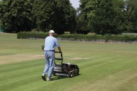 Cricket MowingStrip