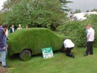 sovereignturfcar.jpg