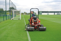 Spurs Mowing