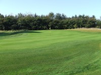 Grassform Ltd. Luton Hoo three point shaped green.jpg