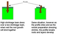 roots_diagram.jpg