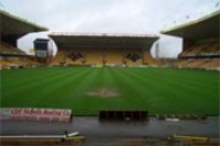 molineux pitch.jpg