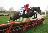 leicester hurdle