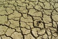 cracking-soils.jpg