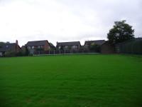Tennis courts grass establishing