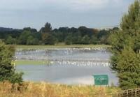 Floods Otley