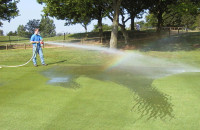 IM001896  Wetting agent application following micro-tining  Orpington.jpg