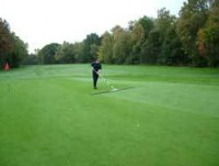 ND-lilleshall-golf--brushin.jpg