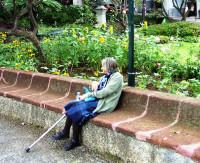 Municipal Gardens, Funchal