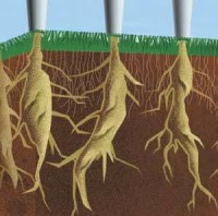 dryject_picture1.jpg