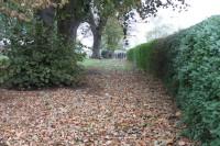 Hedges Park