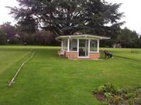 croquet-cheltenham-tree.jpg