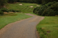 Grassform CoombeHillGC-Buggy Path-1.JPG