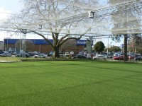 Seddon Park Practice pitches