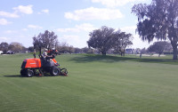 Fairway mowing 552
