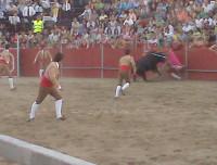 Bull wins.jpg