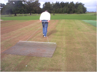 Cricket Renovation