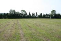 2006-rfu-dry-grass.jpg