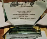 RSD Envioronmental award winner trophy