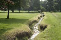golf-diary-3.jpg