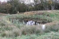 Hopwood Pond