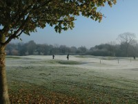 Frost View2