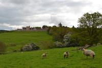 Rockingham Castle HROC Image 3