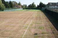 WimbledonOutsideCourt4.jpg