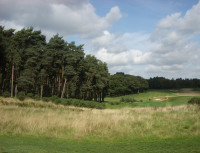 Rescue restored rough at Bearwood Lakes