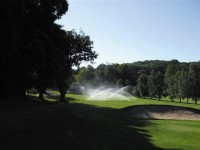 Irrigation-TyrrellsWood2.jpg
