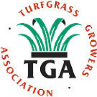 turfgrass_steps.jpg