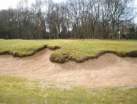 ashridge-Natural-Bunkers.jpg