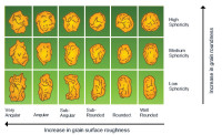 Grain Shape Diagram