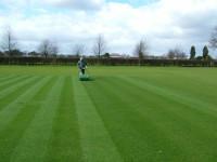 easter-grass.jpg