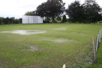 cricket wet square