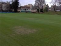 bath cricket club low spots.jpg