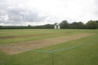 cricket-diary-sept-pitch.jpg
