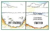 Otterbine STRATIFY