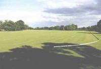 polo-rugbyGrounds-copy.jpg