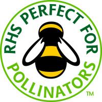 RHS Bee FC1 N