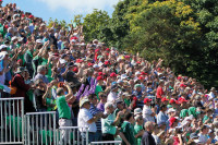 Malahide Crowd