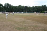 cricket-dry--shifinal-aug-0.jpg