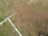 September cricket diary 06 worn pitch