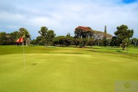 A putting green of Zoysia matrella - Hawaii, March