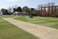 Solihull-Cricket.jpg